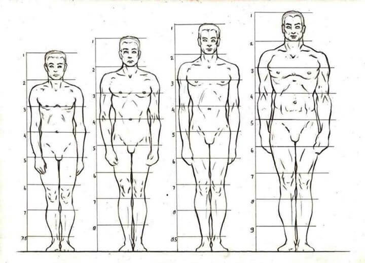 Study-of-Anatomical-Structure-Drawings-by-Veri-Apriyatno-cgfrog-14
