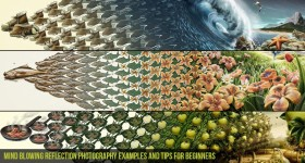 Mind-Blowing-Reflection-Photography-examples-and-Tips-for-beginners-Cgfrog_com_banner