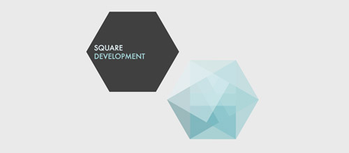 48-square-development-logo