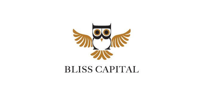 bliss-capital-bird-logo-design