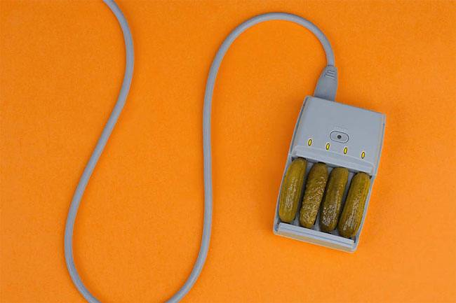 Battery-Charger Cucumber © Martin Roller