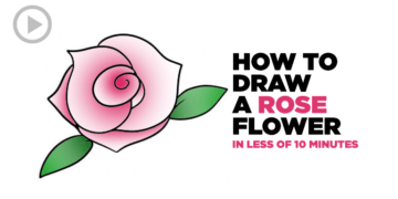 Video- How to Draw a Rose Flower in Less of 10 Minutes