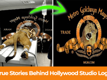 5 True Stories Behind Hollywood Studio Logos
