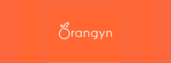 Orangyn Orange Fruit Logo Design