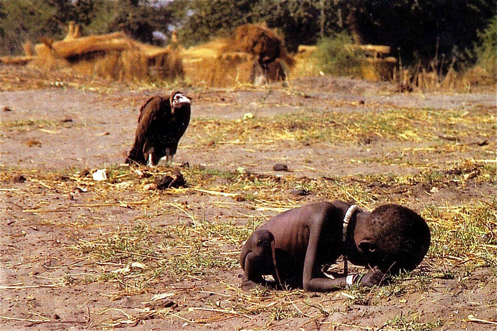 Vulture Stalking a Child Photograph by Kevin Carter